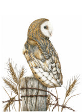 Load image into Gallery viewer, 'Barn Owl' Giclée print