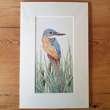 Load image into Gallery viewer, 'Kingfisher in the Reeds' Giclée print