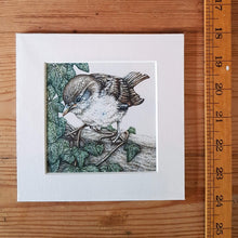 Load image into Gallery viewer, 'Sparrow and Ivy' Giclée print