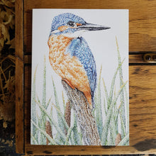 Load image into Gallery viewer, 'Kingfisher in the Reeds' card