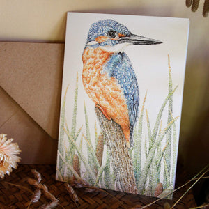 'Kingfisher in the Reeds' card