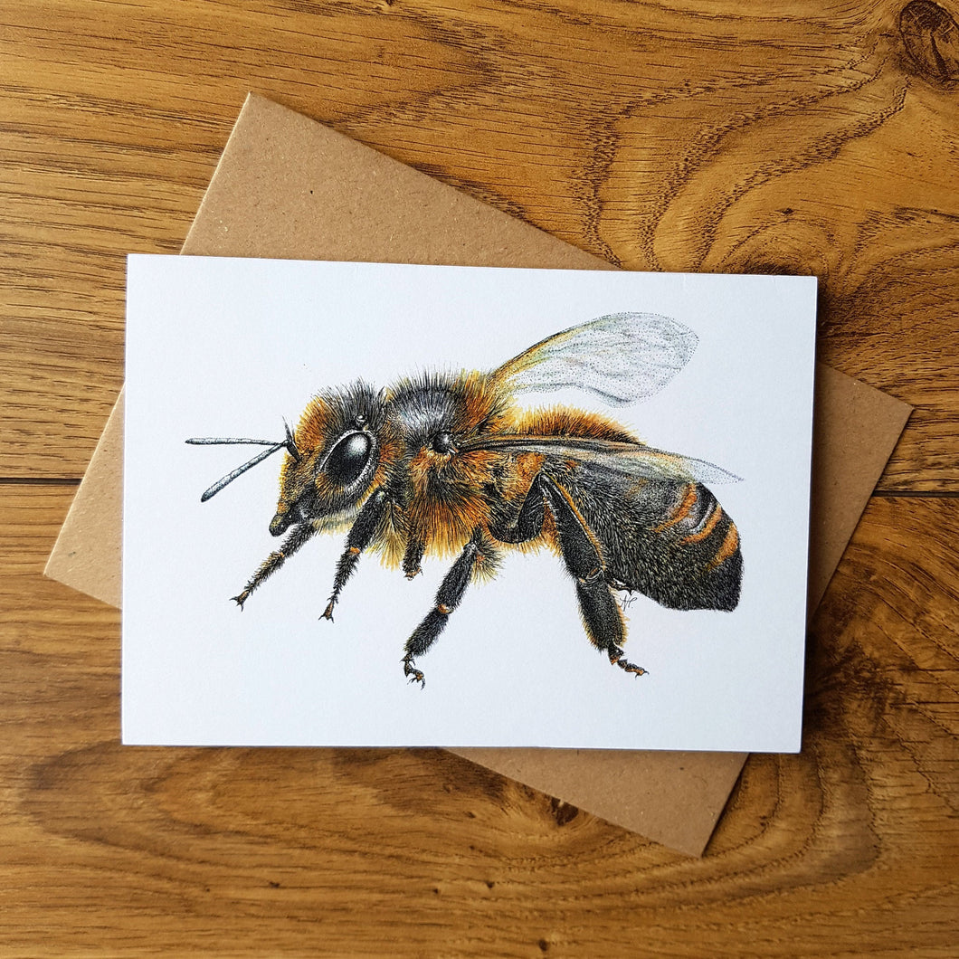 'Cornish Black Bee' card