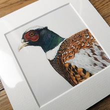 Load image into Gallery viewer, 'Young Pheasant' Giclee print