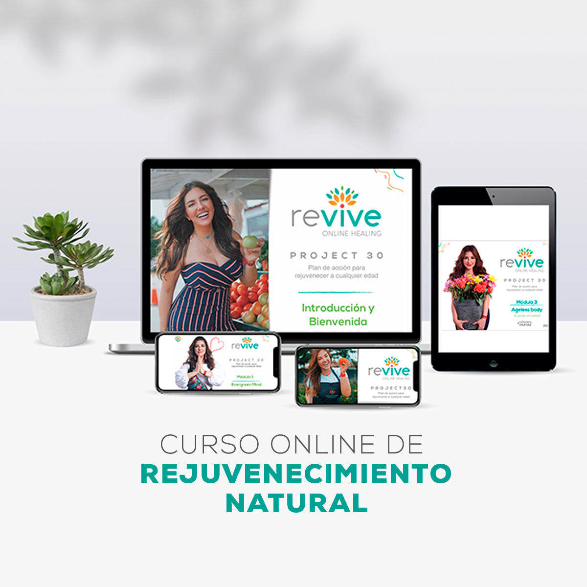 Curso Online Revive Project 30