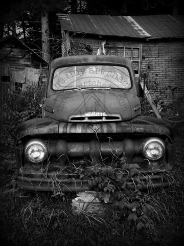 Photos by Tina Bee - Old Ford Truck