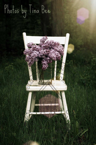 Photos by Tina Bee - Lilacs in the Sun
