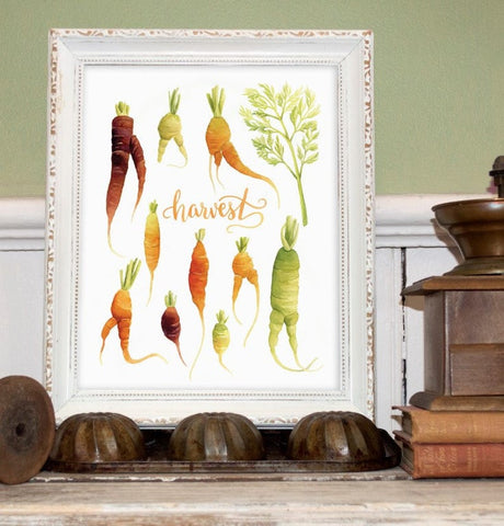 "Alicia's Infinity - Carrot Kitchen Art ""Harvest"" Watercolour"