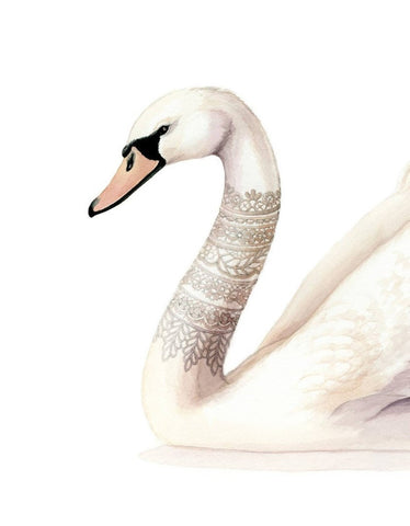 Alicia's Infinity - Lace neck Swan Watercolour