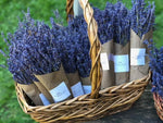 Purple Hill - Dried Lavender Bouquet