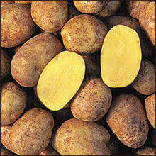 Potatoes YUKON GOLDS 1LB