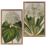 Floral Botanical Framed Print – 2 Assorted