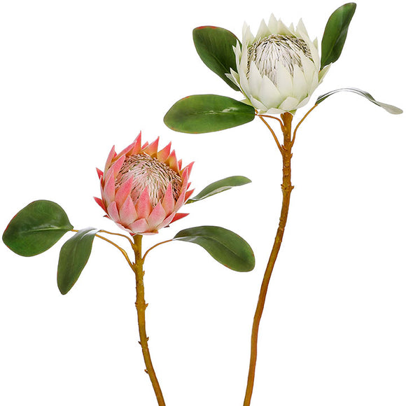 "25"" Protea Spray – 2 Assorted"