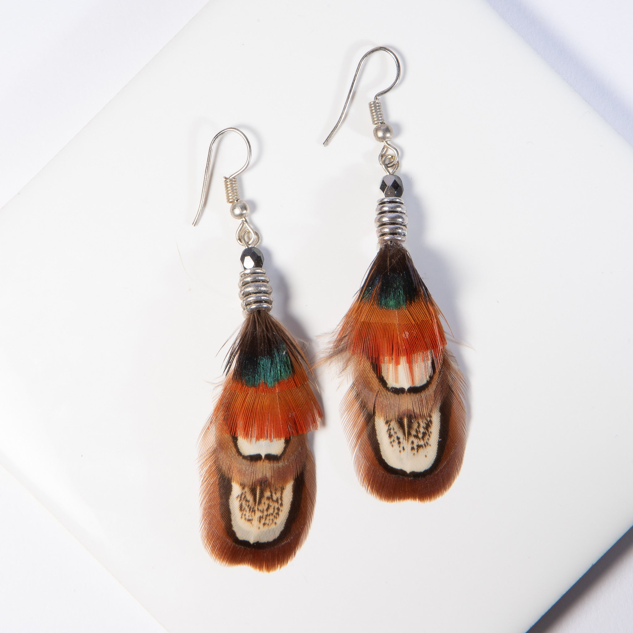 Ringneck and Golden Pheasant Feather Earrings