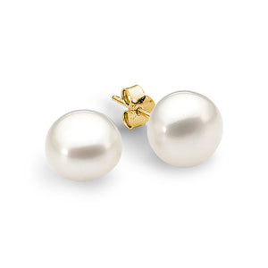 9ct Yellow Gold White 9-9.5mm Button Freshwater Pearl Stud Earrings