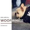 Woof-White Dog Windbreaker