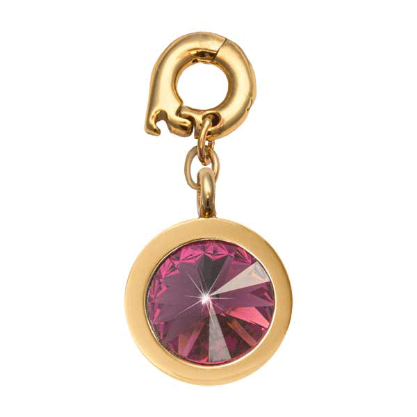 Nikki Lissoni Gold Plated February 15mm Charm