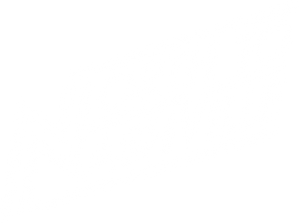 Shop North to Nashville