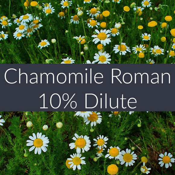 Chamomile Roman 10% Essential Oil
