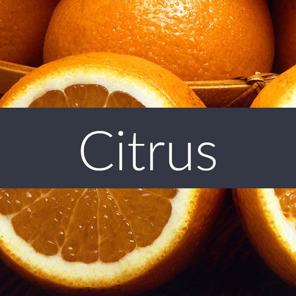 Citrus Auto Freshener Spray