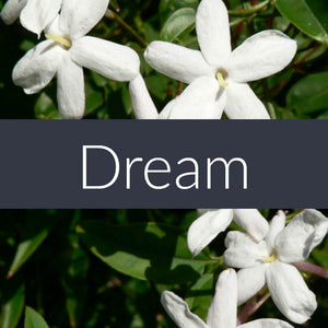 Dream Essential Oil Blend