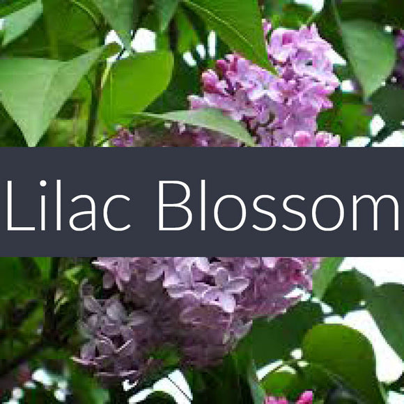 Lilac Blossom Finesse Crystals