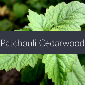 Patchouli Cedarwood Fragrance Oil