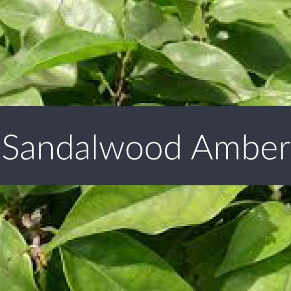 Sandalwood Amber Fragrance Oil