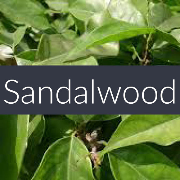 Sandalwood Fragrance Oil