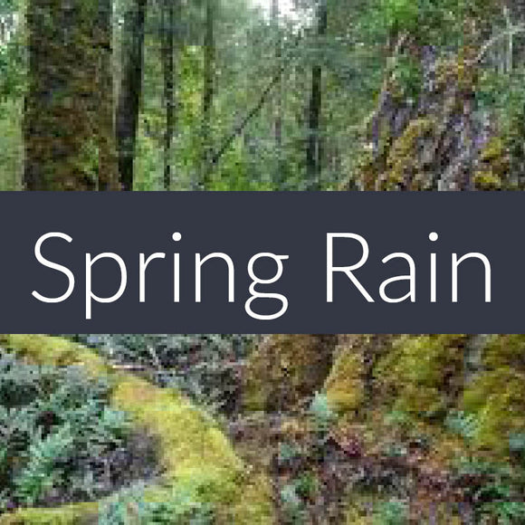 Spring Rain Fragrance Oil