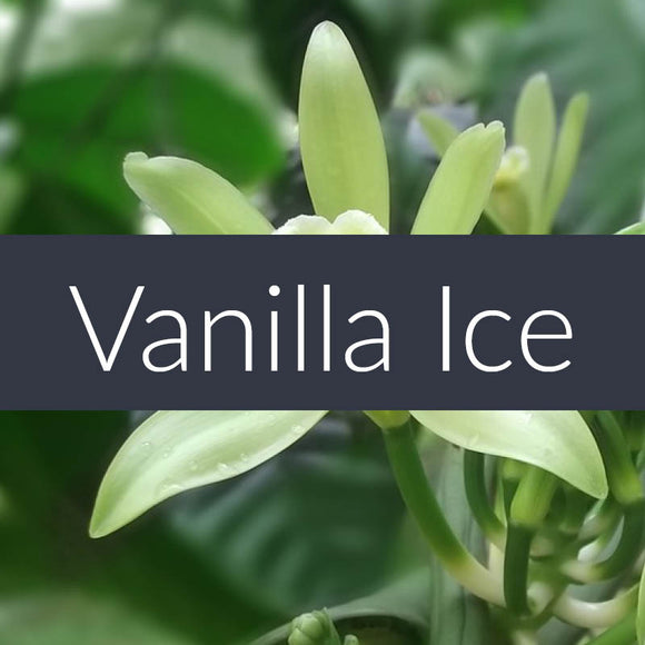 Vanilla Ice Fragrance Oil