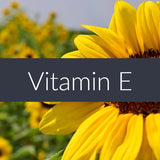 Vitamin E Professional Massage Oil