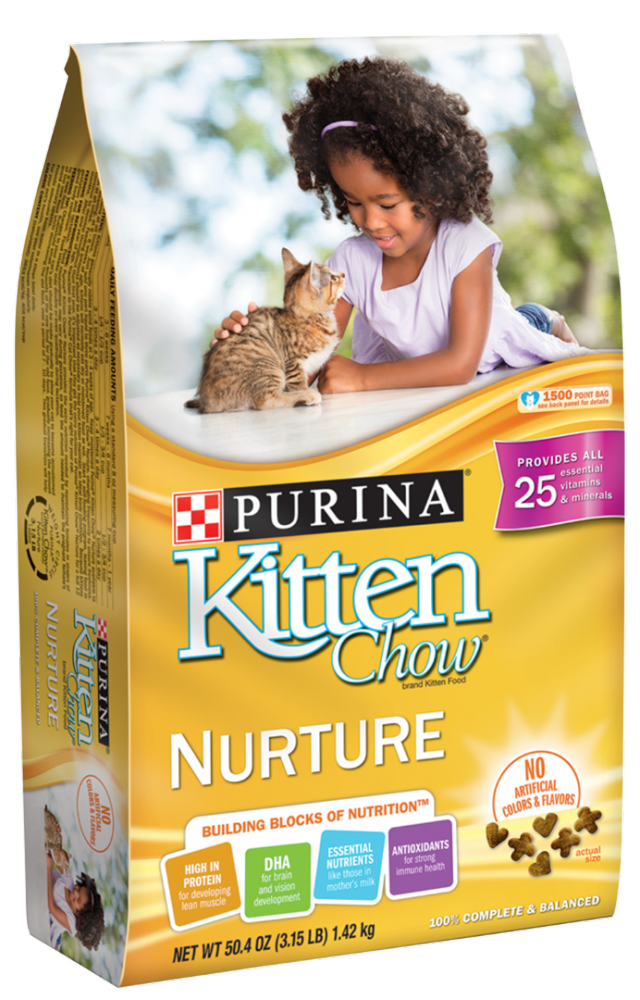 Purina Kitten Chow Dry Cat Food