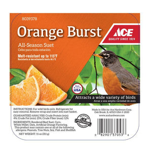 Ace Orange Burst Suet
