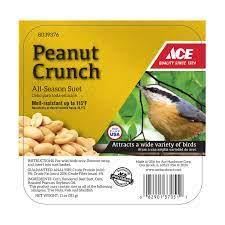 Suet Peanut Crunch 11oz - Young's Pet Supplies
