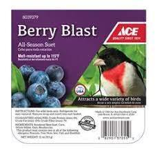 Suet Berry Blast 11oz