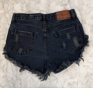 One Teaspoon Black Denim Shorts- size 24