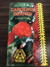 Load image into Gallery viewer, Pepper - Capsicum 'Carolina Reaper - WORLDS HOTTEST PEPPER' (4.5 Inch in Bag)