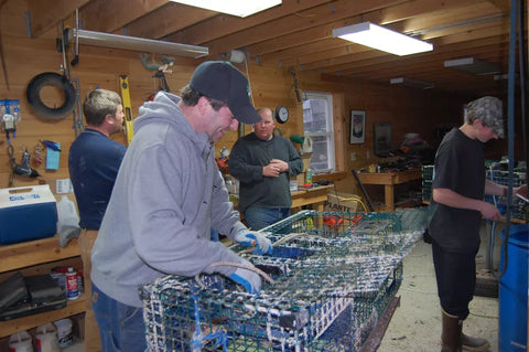 Josh, Jason, and members of the Tenants Harbor Fisherman's Co-op working on their traps.