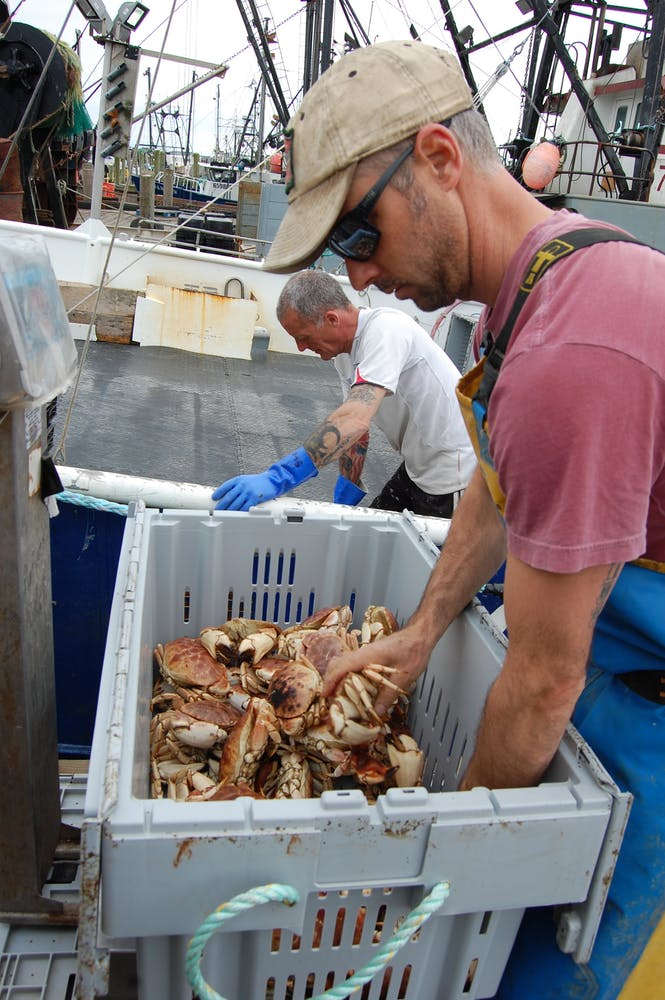 A man wearing a hat and sunglasses reaching into a box full of crabs