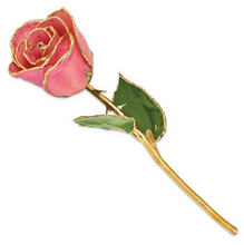 Load image into Gallery viewer, Lacquer Dipped Rose