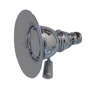 Whitehaus Showerhaus Small Round Rainfall Showerhead with Spray Holes - Solid Brass Construction with Adjustable Ball Joint in Chrome