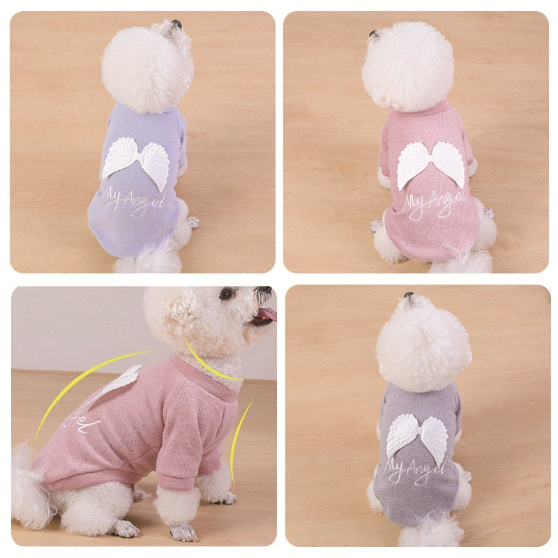 Dog Angel Clothing
