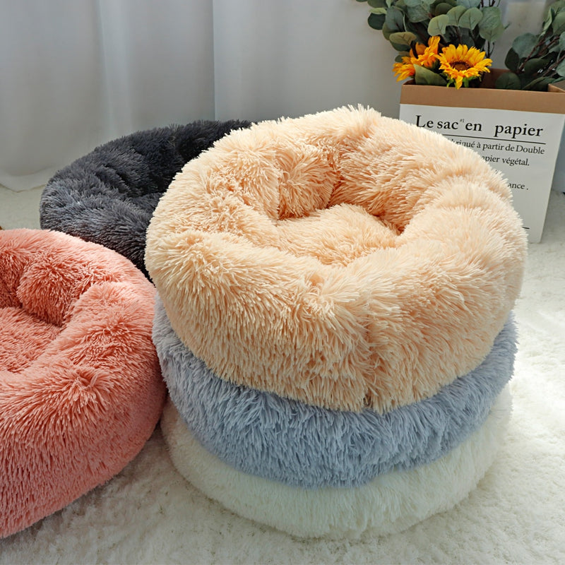 Long Plush Bed For Small Dogs