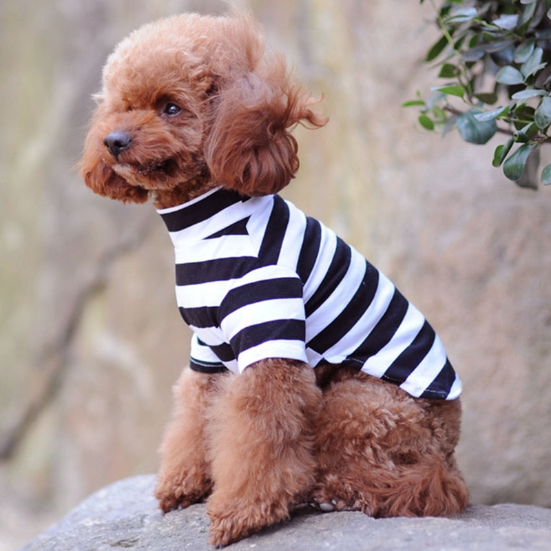 Small & Medium Dog Striped T-Shirt