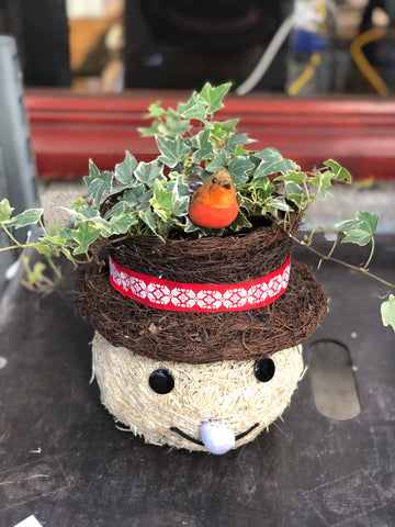 Happy Plants: Marmite the Snowman