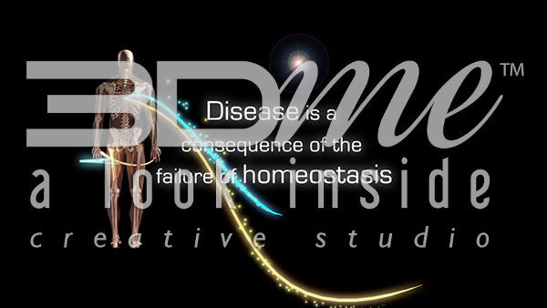 How is disease and homeostasis related?