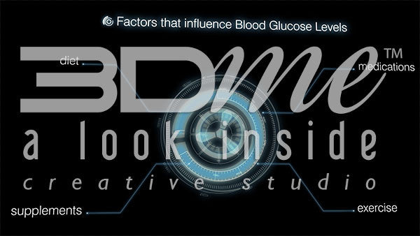Graphics - Blood Glucose Level Factors