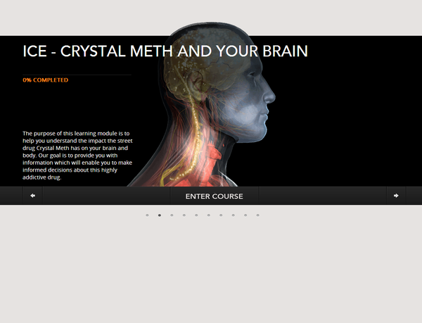 ICE Crystal Meth and Your Brain
