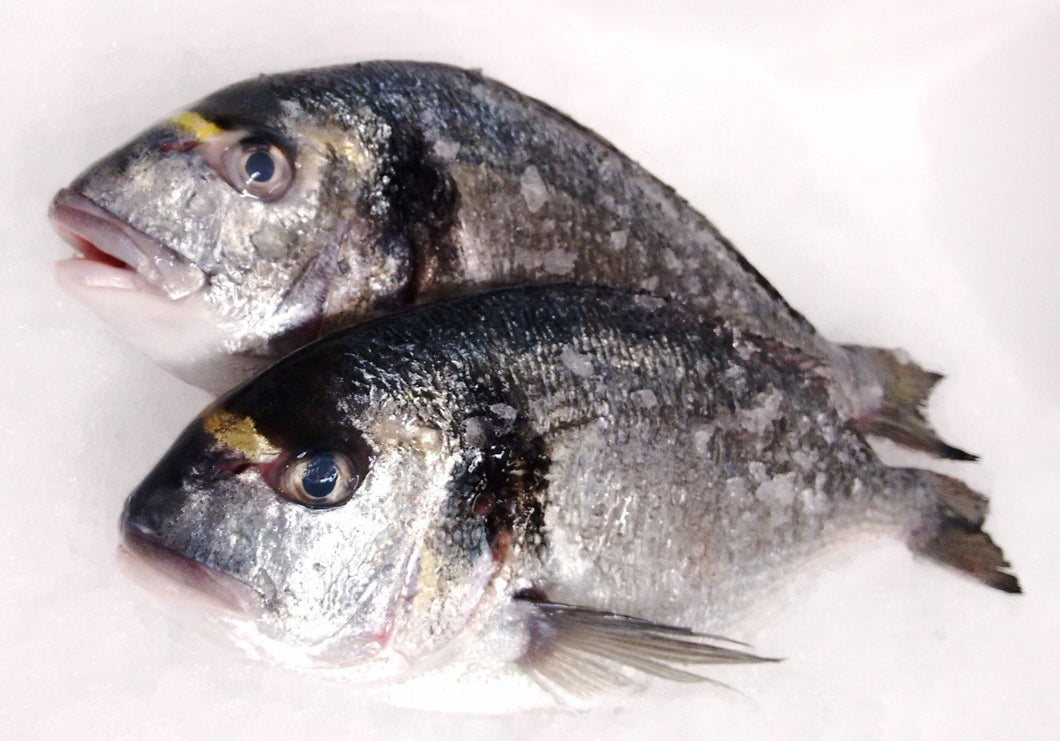 Bream: Gilt Head : 300-400g