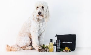 Getting Natural With Bondi Wash
